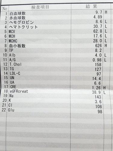 数値 9 貧血