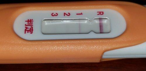 排卵 検査 薬 妊娠 判定
