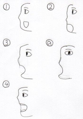 横顔のイラストで口をこのように描く理由は何故でしょうか口の向きが