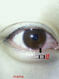 白い 黒目 点 に