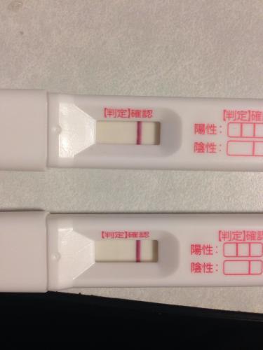 高温期14日目 陰性 妊娠してた