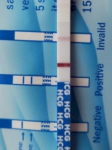 早期 妊娠 検査 薬 フライング