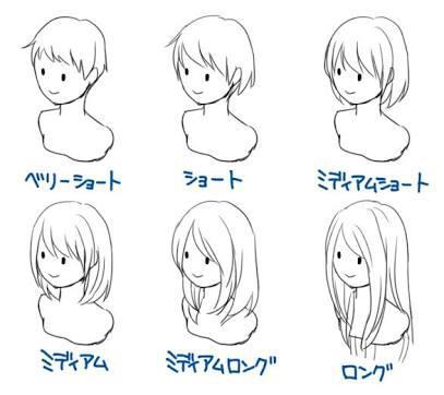 「男性の皆さんへ質問です 女性の髪の長さで」の