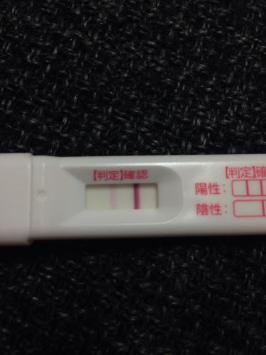 フライング 胚盤胞移植 5日目
