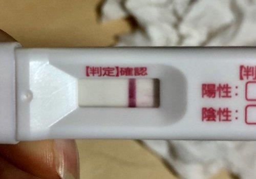 妊娠 検査 薬 陰性 双子
