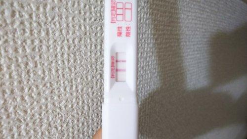 腹痛 高温 日 期 13 目