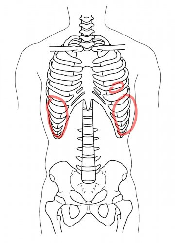 婦人 痛い 科 の 肋骨 左 下 が