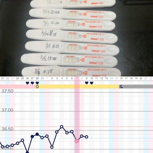 排卵検査薬 無排卵 反応