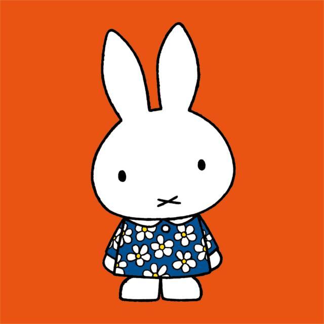 ミッフィーお気に入りのドレス