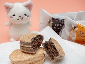 チョコレート味は濃厚なのにくどくなく、後味もとてもいい!