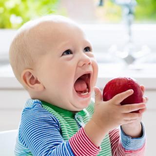 虫歯のない人は歯周病にかかりやすいってホント? 歯科医に聞いてみた