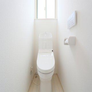 まさかそこにはいないよね?ゴキブリのトイレへの侵入経路と生息兆候