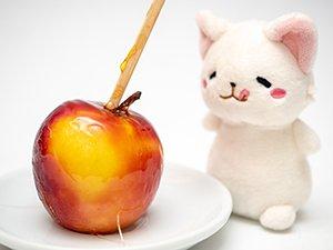 りんご飴の甘い香りに包まれて幸せそうなマモニャン