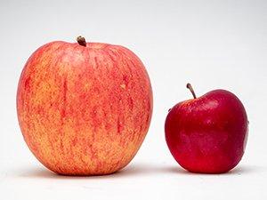 一般的な国産りんごの大玉とロキット アップル
