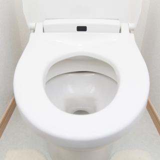 なぜトイレの便器は白ばかりなのか?