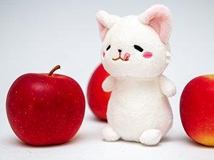 ロキット アップルとミニサイズのマモニャンぬいぐるみ(全長約12cm)