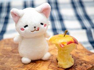 ロキット アップルは皮が薄いので食べやすい