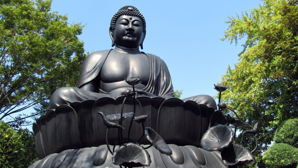 """Tokyo Buddha"" , one of the three major Japanese Buddha statues,  and unique stone statues."