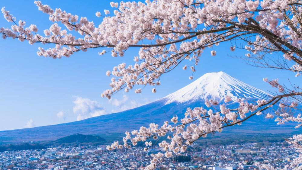 Tips from Japan Trip Experts!! Japan's World Heritage Sites Feature: Mt. Fuji (Yamanashi/Shizuoka)