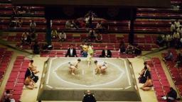 Japanese culture experience : Sumo